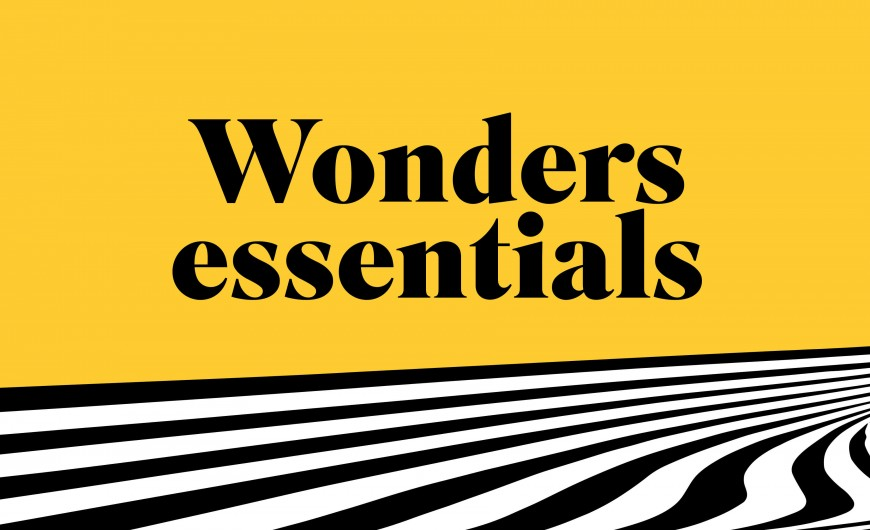 Shop Wonders Essentials Collection | Wonders.com
